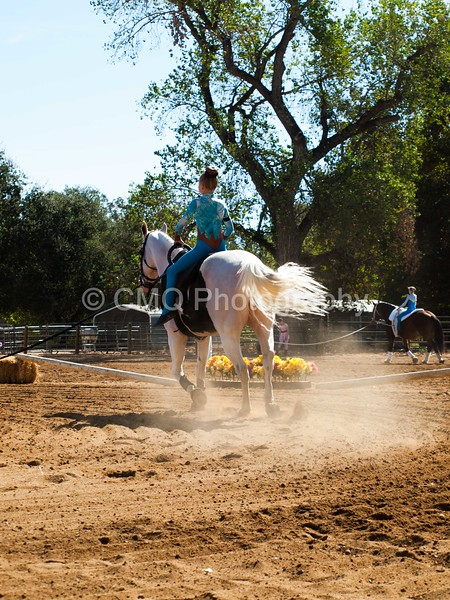 2016_Vaulting_Camelot_(1502_of_3844)
