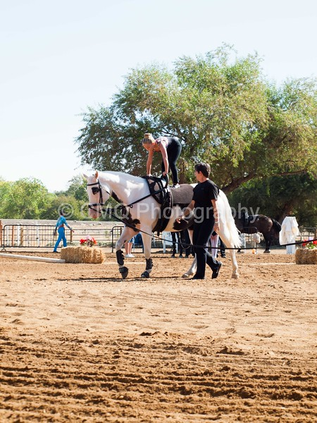 2016_Vaulting_Camelot_(1304_of_3844)