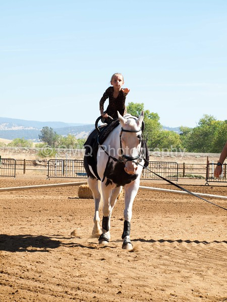 2016_Vaulting_Camelot_(1677_of_3844)