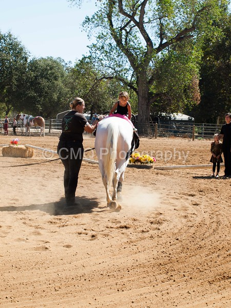 2016_Vaulting_Camelot_(1928_of_3844)