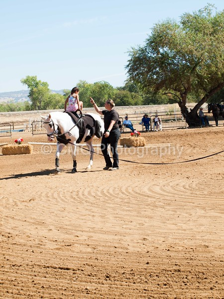 2016_Vaulting_Camelot_(1870_of_3844)