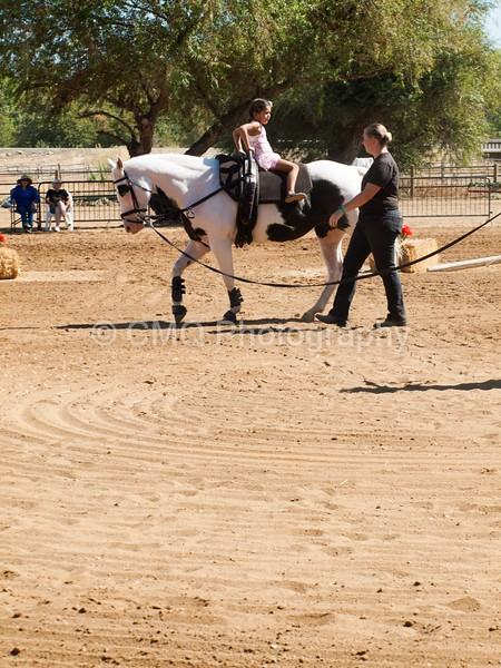 2016_Vaulting_Camelot_(1858_of_3844)