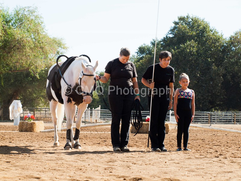2016_Vaulting_Camelot_(1285_of_3844)