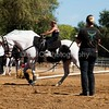 2016_Vaulting_Camelot_(2604_of_3844)