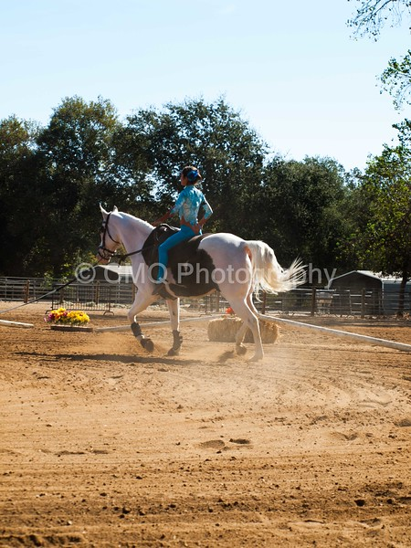 2016_Vaulting_Camelot_(1469_of_3844)