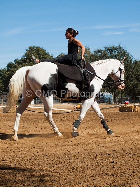 2016_Vaulting_Camelot_(2769_of_3844)
