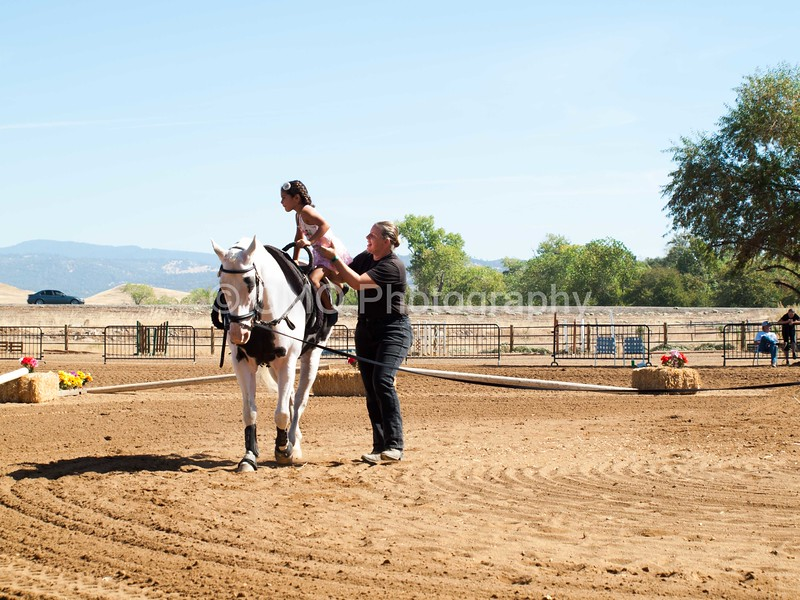 2016_Vaulting_Camelot_(1646_of_3844)