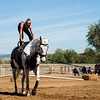 2016_Vaulting_Camelot_(2596_of_3844)