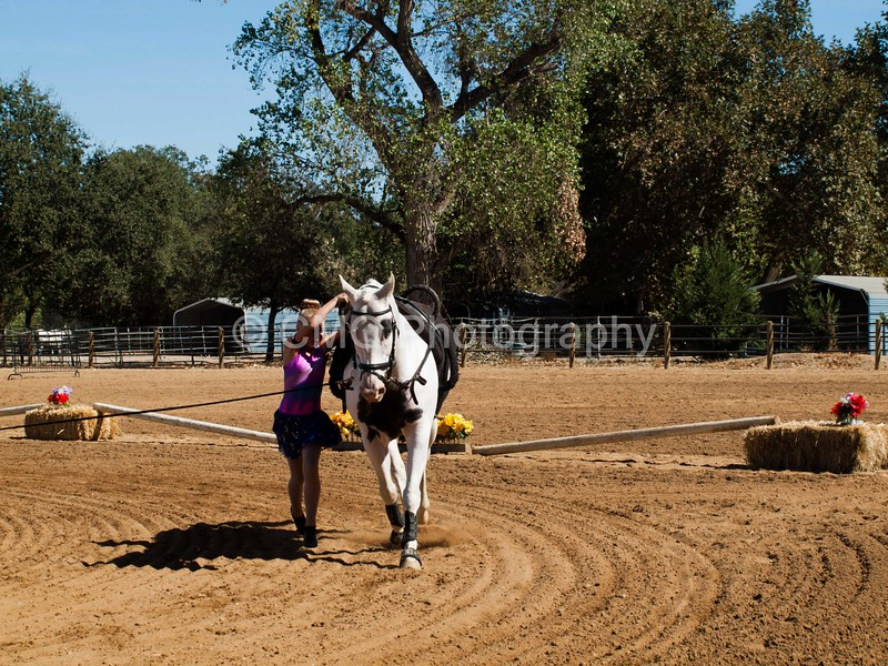2016_Vaulting_Camelot_(3049_of_3844)
