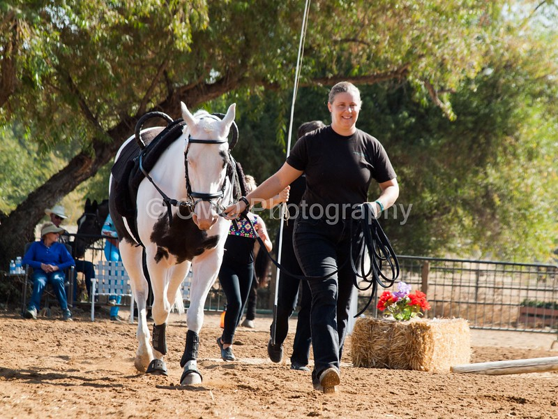 2016_Vaulting_Camelot_(1284_of_3844)