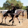 2016_Vaulting_Camelot_(1881_of_3844)