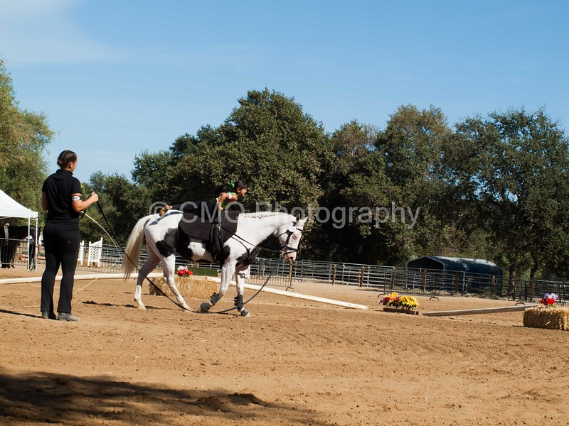 2016_Vaulting_Camelot_(3130_of_3844)