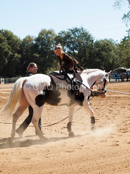 2016_Vaulting_Camelot_(1883_of_3844)
