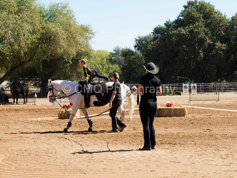2016_Vaulting_Camelot_(1872_of_3844)