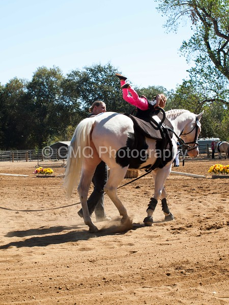 2016_Vaulting_Camelot_(1709_of_3844)