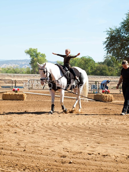 2016_Vaulting_Camelot_(1674_of_3844)