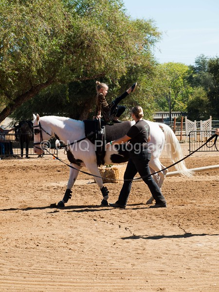 2016_Vaulting_Camelot_(1896_of_3844)