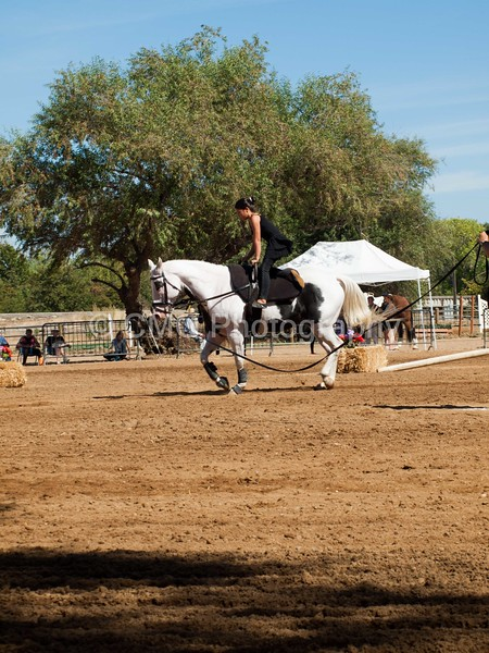 2016_Vaulting_Camelot_(2774_of_3844)