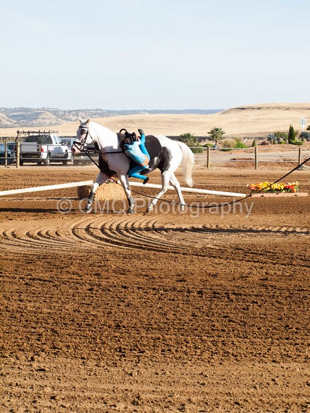 2016_Vaulting_Camelot_(63_of_3844)