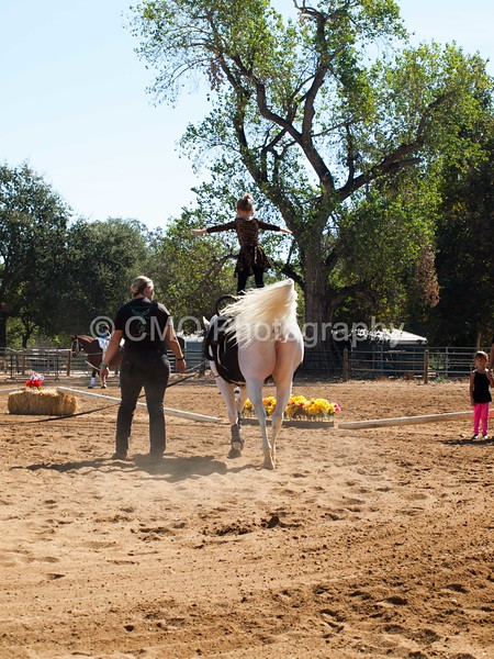 2016_Vaulting_Camelot_(1686_of_3844)