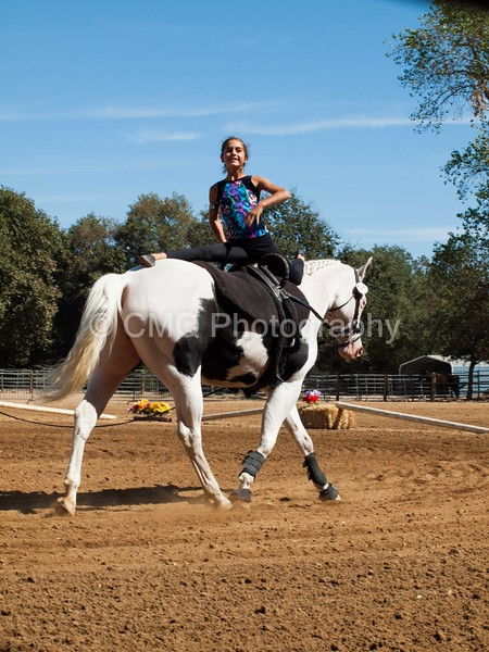 2016_Vaulting_Camelot_(2720_of_3844)