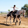 2016_Vaulting_Camelot_(1650_of_3844)