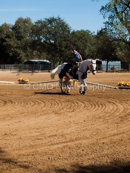 2016_Vaulting_Camelot_(3043_of_3844)