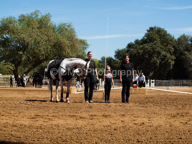 2016_Vaulting_Camelot_(2581_of_3844)