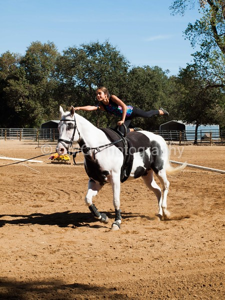 2016_Vaulting_Camelot_(2947_of_3844)