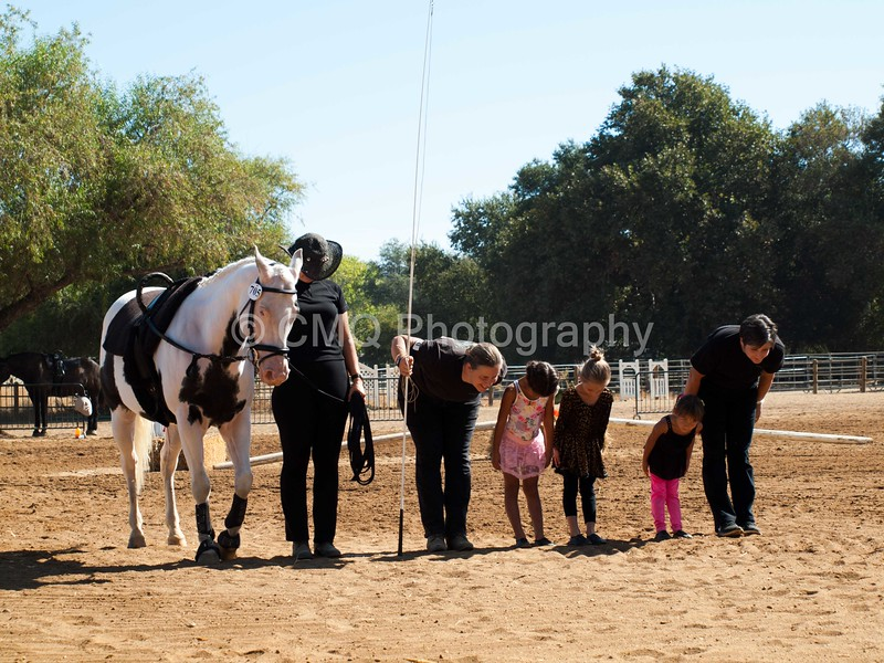 2016_Vaulting_Camelot_(1643_of_3844)