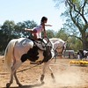 2016_Vaulting_Camelot_(1652_of_3844)