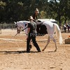 2016_Vaulting_Camelot_(1890_of_3844)