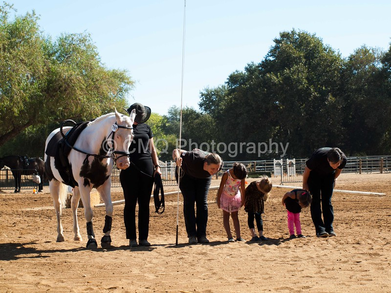2016_Vaulting_Camelot_(1644_of_3844)
