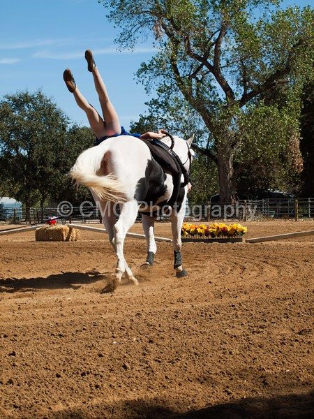 2016_Vaulting_Camelot_(2748_of_3844)