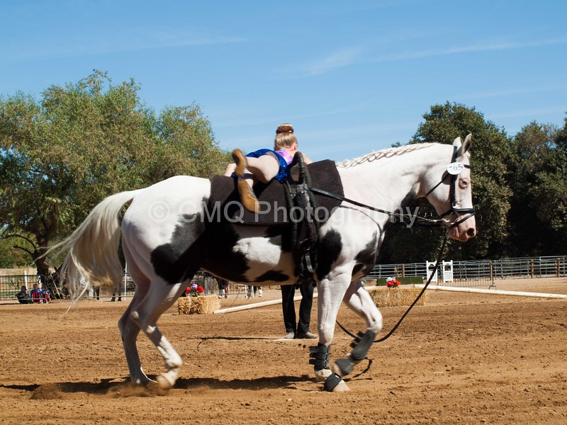 2016_Vaulting_Camelot_(2738_of_3844)