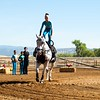 2016_Vaulting_Camelot_(1498_of_3844)
