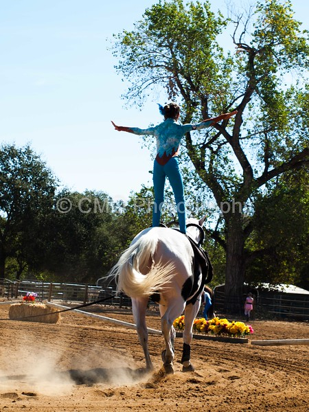 2016_Vaulting_Camelot_(1479_of_3844)