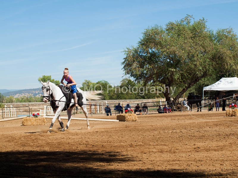2016_Vaulting_Camelot_(2735_of_3844)
