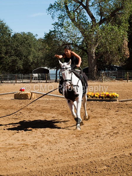 2016_Vaulting_Camelot_(2975_of_3844)