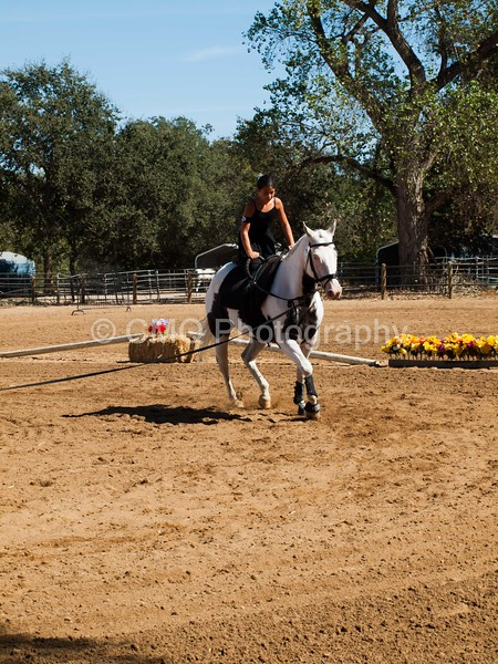 2016_Vaulting_Camelot_(2974_of_3844)