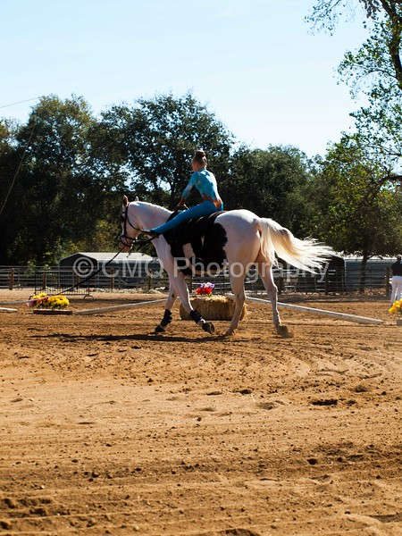 2016_Vaulting_Camelot_(1503_of_3844)
