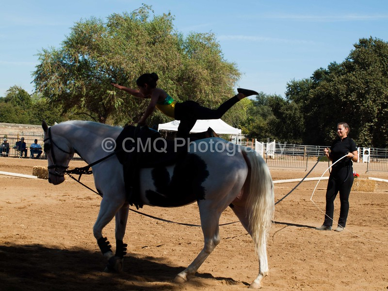 2016_Vaulting_Camelot_(3022_of_3844)