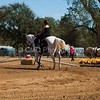 2016_Vaulting_Camelot_(2762_of_3844)