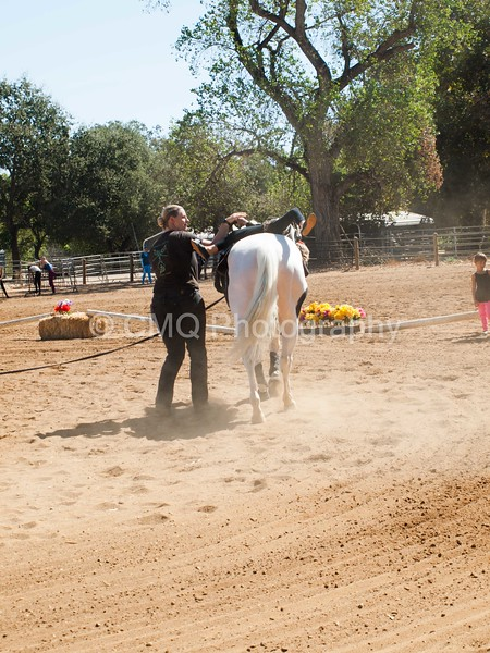 2016_Vaulting_Camelot_(1886_of_3844)