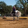 2016_Vaulting_Camelot_(2751_of_3844)