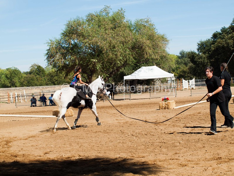 2016_Vaulting_Camelot_(2943_of_3844)