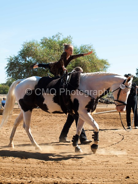 2016_Vaulting_Camelot_(1682_of_3844)