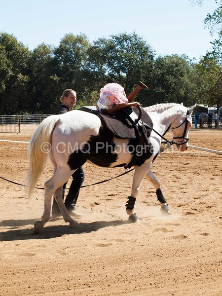 2016_Vaulting_Camelot_(1865_of_3844)