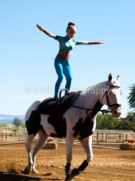 2016_Vaulting_Camelot_(1501_of_3844)