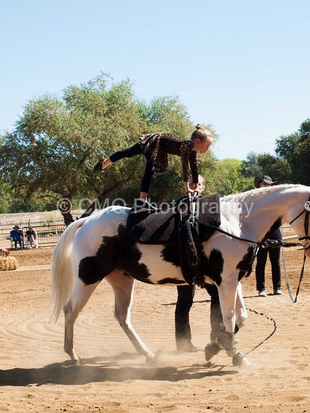 2016_Vaulting_Camelot_(1906_of_3844)